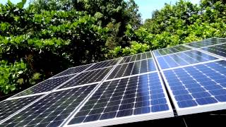 Monocrystalline Solar panels in Jamaica Call 467-6643