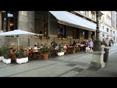 Spain Internship - International Relations Testimonial - Satya's Experience