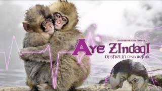 Aye Zindagi Gale Laga Le (Sadma)   Dj Shelin   DnB Remix