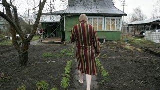 В Ленобласти запретили создание новых дачных поселков(, 2016-08-03T15:52:48.000Z)