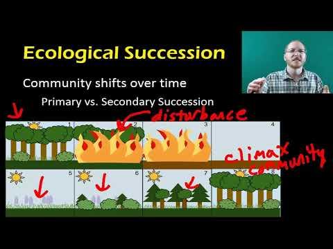 Bio 3.1 - Community Ecology