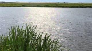 видео Фото мир «Panoramio»