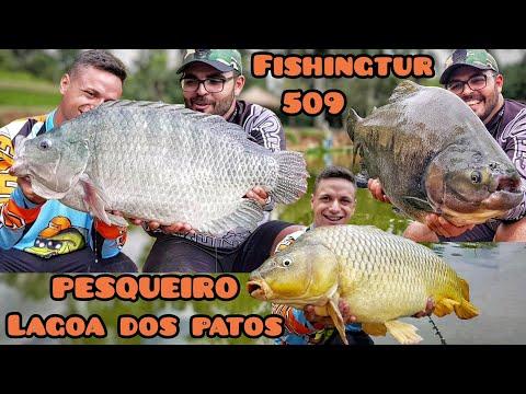 Lagoa dos Patos - Dia com grandes surpresas na ponta da linha - Fishingtur 509