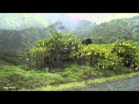 Boquete Landscapes May 2014