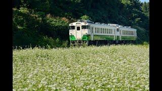 190908 只見線 早戸駅422D ~ 会津坂本駅周辺 423D / 424D