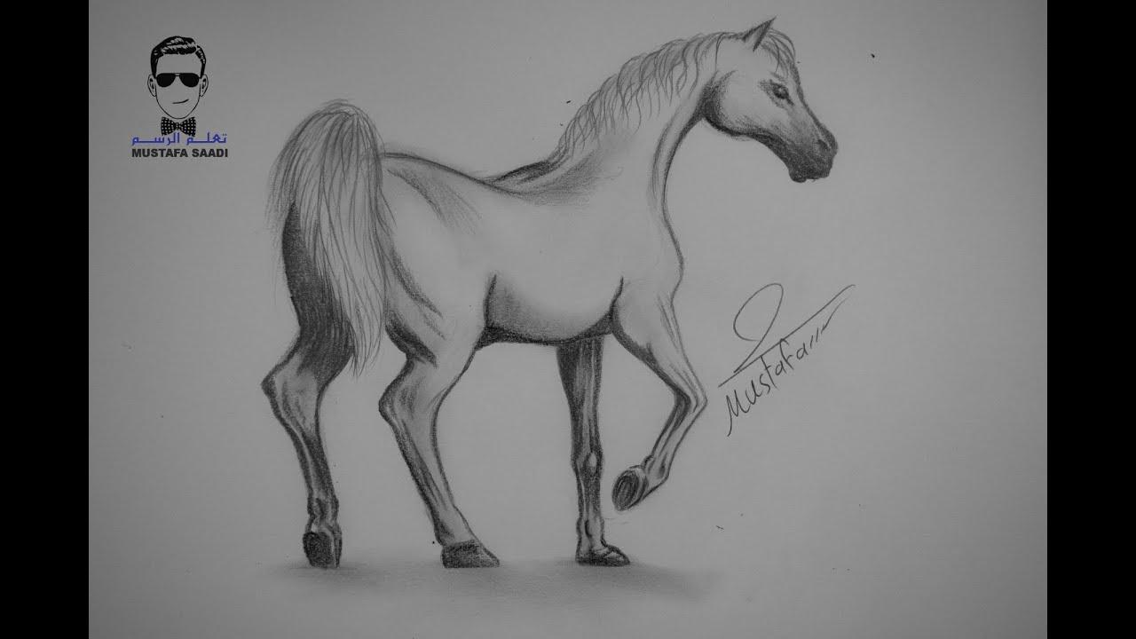 تعلم كيفية رسم حصان بالرصاص مع الخطوات للمبتدئين Youtube