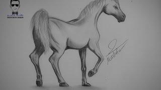 تعلم كيفية رسم حصان بالرصاص مع الخطوات للمبتدئين
