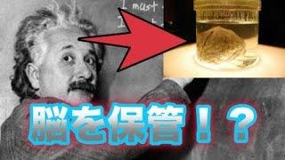 アインシュタイン博士は1955年に76歳で亡くなった後、その脳の大...