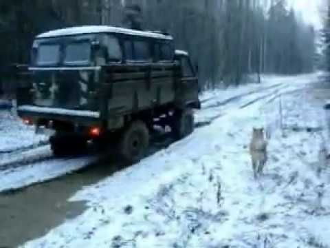 УАЗ-3303 лесовозка - YouTube