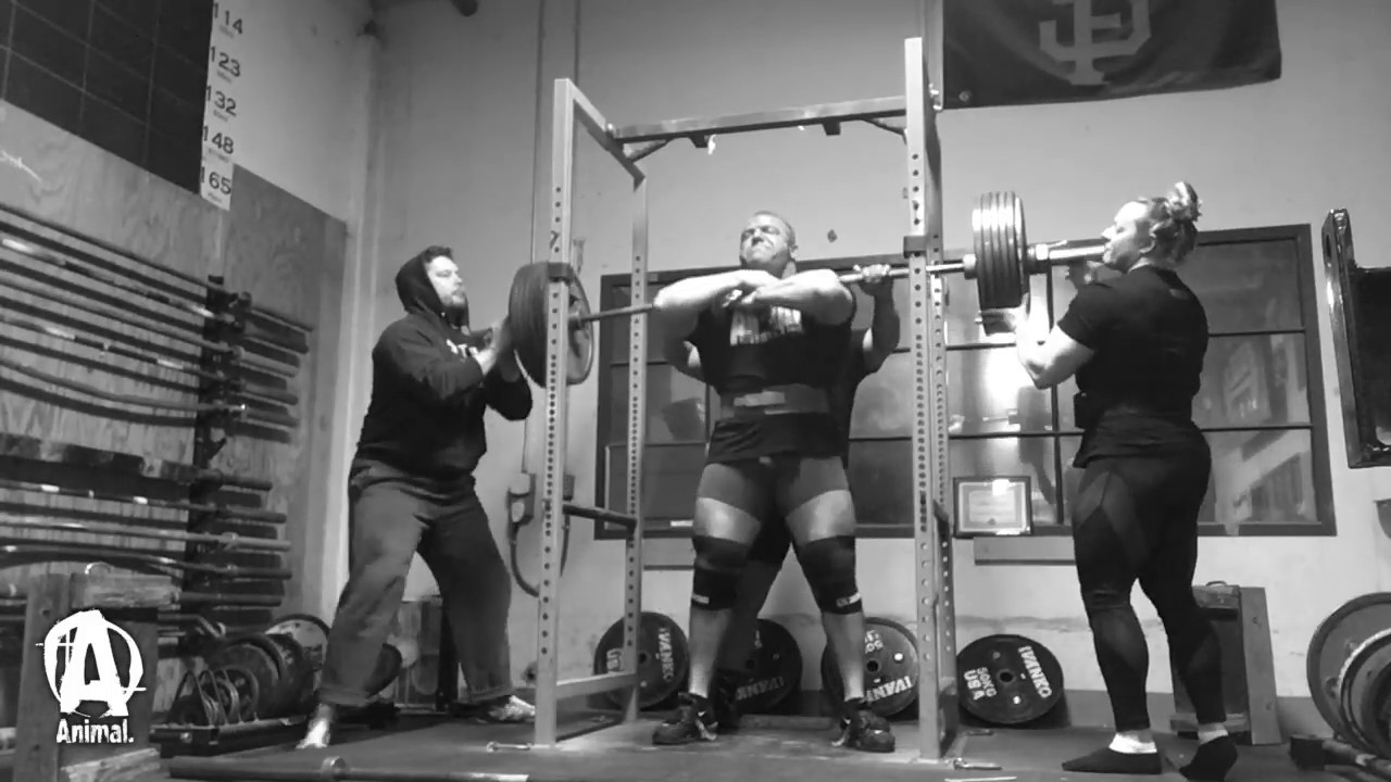 The Animal Underground: Andrew Herbert Squats and Deads