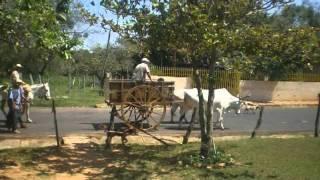 La carreta, por Alberto de Luque