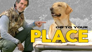 Teach Your DOG The PLACE Command  Go To Your Place  Robert Cabral Dog Training Video