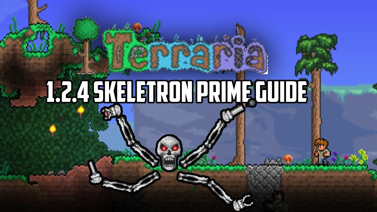 prime guide