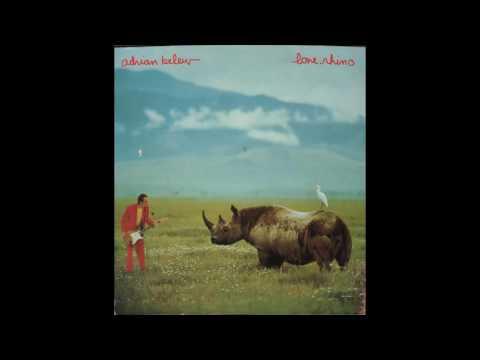 Adrian Belew — Naive Guitar (Lone Rhino, 1982) vinyl lp mp3