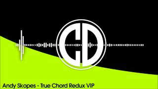 Andy Skopes - True Chord Redux VIP