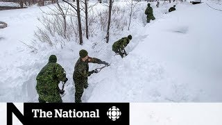 Army reservists dig out stranded Newfoundlanders after storm