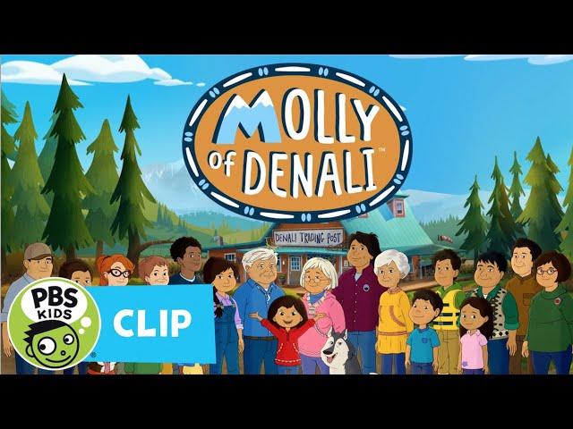 Come Along with Molly! | MOLLY OF DENALI