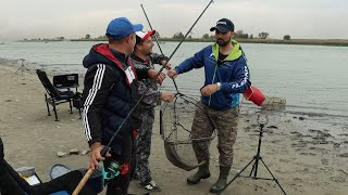 Осенний жор САЗАНА во время песчаной бури река Дон Рогожкино. Сазан не РВЕТ лески Рыбалка 2020