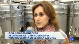 Curso de Vitivinicultura Online de la F.P. de Industrias Alimentarias - La Rioja