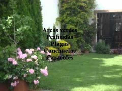 Jardines pasto instalacion youtube - Casas con jardines bonitos ...