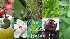 hqdefault - Anong Gamot Sa Diabetes