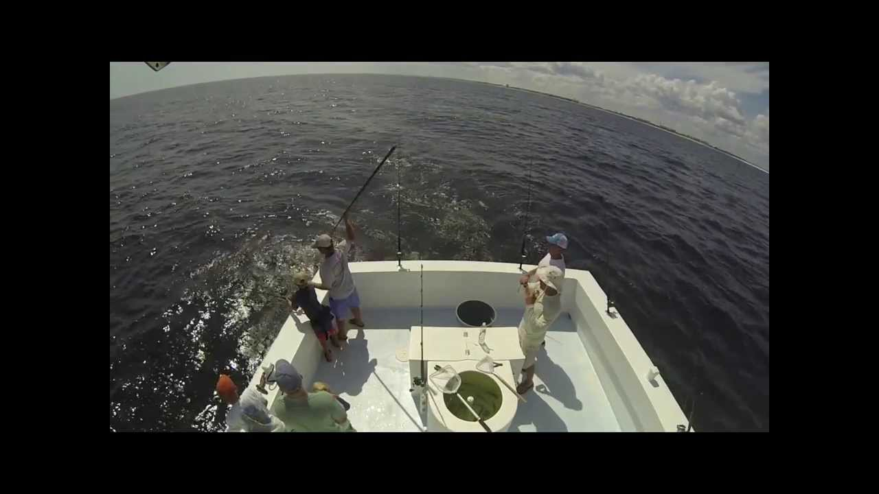 how to catch king mackerel from surf