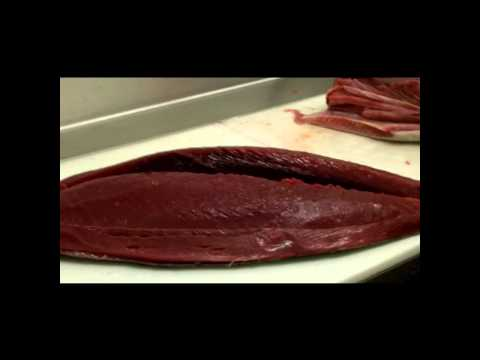 Fresh Tuna - Wholesale Seafood Distributor - Jacksonville, FL