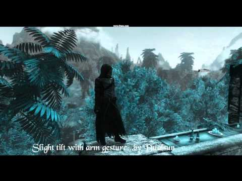 HDT Skyrim / Lifelike Idle Animations / HDT Realistic Bounce and