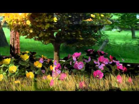 3D Garden Animation