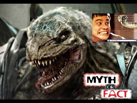 Why most Humans Reject The Idea Of Reptilians in humanoid form