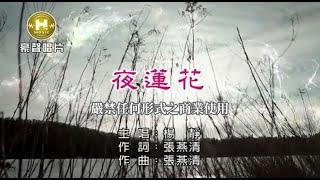 楊靜-夜蓮花【KTV導唱字幕】1080p