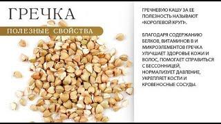 Полезные свойства гречки для организма