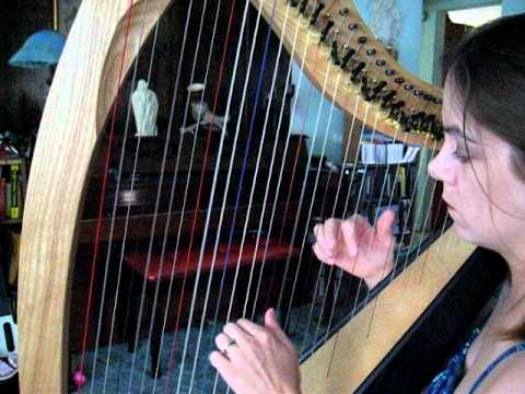Pachelbel's Canon in D on Dusty Strings Ravenna 34 lever harp