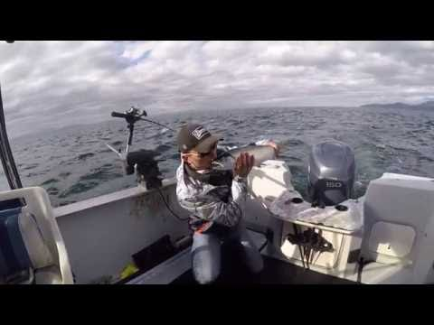 2 Reel Fishing Adventures