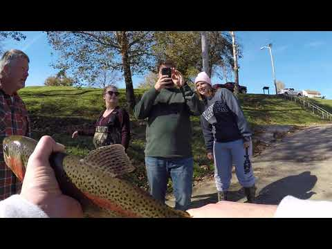 Trout Fishing The Cumberland River Pt.1 ( Wolf Creek Dam)