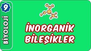 İnorganik Bileşikler  9. Sınıf Biyoloji