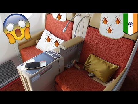 Air India New Jersey dipenuhi dengan kutu kasur - TomoNews