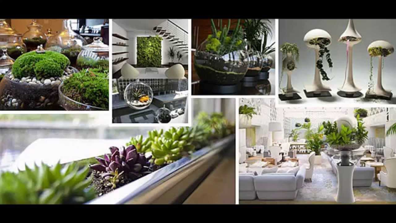 Garden ideas indoor garden ideas apartment youtube for Indoor nature design challenge