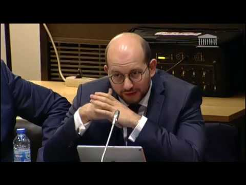 Audition Sandro Gozi - Commission des Affaires Etrangères