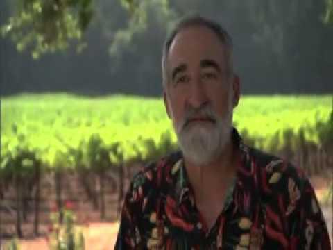 Provenance Vineyards   2011
