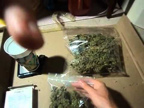 How To Grow Weed For Dummies Part #11 FINAL WEIGH IN !!!