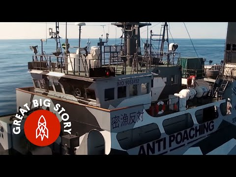Meet the Crew Protecting Our Oceans