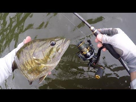 My NEW BEST Finesse Fishing Bass Rod
