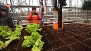 В «Аптекарском огороде» показали первого в России робота-огородника