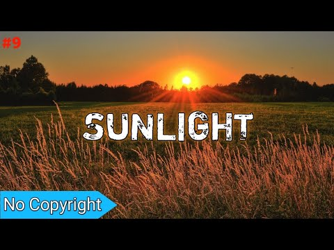 Beats - InfiNoise - Sunlight _ Copyright Free Musics,Royalty Free Music,No Copyright Songs For Vlogs