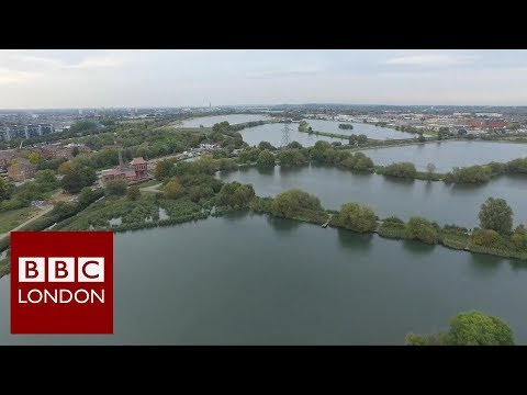 The Wetlands of Walthamstow – BBC London News