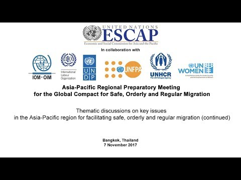 Thematic discussions on key issues in the Asia-Pacific region (continued)