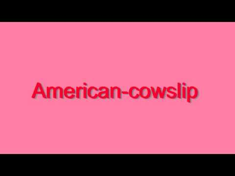 How to Pronounce Americancowslip