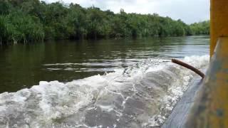 Download gunung senujuh SAMBAS, Kalimantan Barat PlanetLagu com
