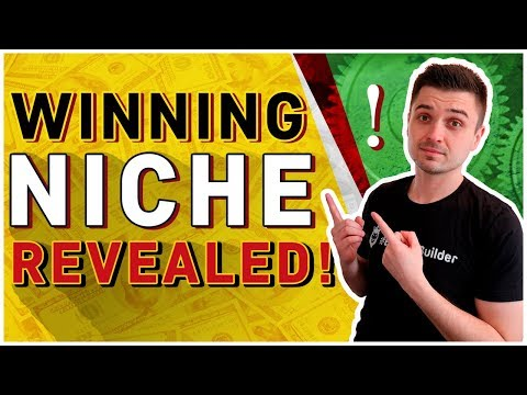 HOW TO FIND WINNING & PROFITABLE NICHES IN 2018 | SHOPIFY CLICKFUNNELS DROPSHIPPING thumbnail